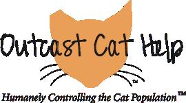 Outcast Cat