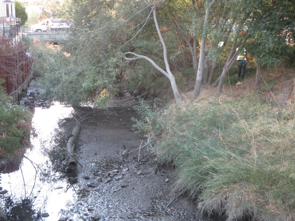 "The ""beaver deceiver,"" a flow device installed in Alhambra Creek to prevent flooding near a primary beaver dam in Martinez, lays in the mud before its removal by city crews this week. (HEIDI PERRYMAN / Courtesy)"