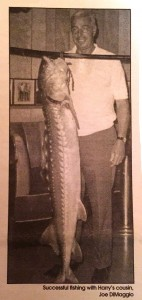 Vince Ferrante (Sr.) was in Amato's bar after his cannery shift, talking to cousins Vince and Jack Amato, when Joe DiMaggio (pictured here circa late 1960s) brought in this prized catch. DiMaggio had been out fishing with his cousin, Harry Russo. (VINCE FERRANTE / Courtesy)