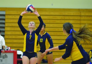 Alhambra senior captain Lexy Swenson (7) sets up her teammates in the Bulldogs' 3-2 loss to the Albany Cougars on Wednesday, Nov. 11, 2015, in the opening round of the North Coast Section playoffs on the road in Albany. (GERARDO RECINOS / Martinez Tribune)
