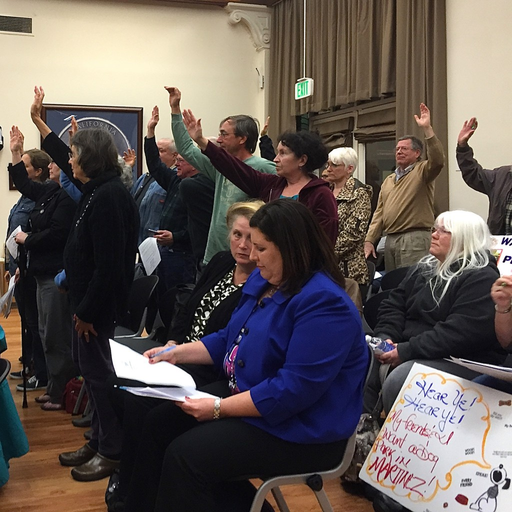 Supporters of Resolution No. 009-15, pertaining to the 99-home development once proposed for the land at Pine Meadow Golf Course, stand in support of the resolution remaining on the November ballot, at the Feb. 17 meeting of the Martinez City Council. Seated in the foreground is property owner Christine Coward Dean  (at left) and DeNova Homes' General Counsel, Dana Tsubota. (TASHINA MANYAK / Martinez Tribune)