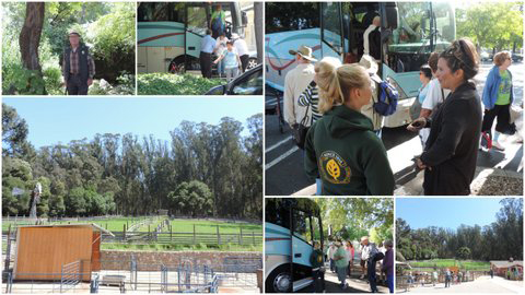 Approximately 24 seniors were transported by coach to Tilden Park, part of the East Bay Regional Park system, for a narrated hike on the 1.3 mile Jewel Trail. Guests were free to visit the Little Farm and feed the animals lettuce or celery. More adventures like this will be offered by the Martinez Senior Center. This trip was free, however many are only $5. (PHOTOS & COLLAGE BY JOHN GRUBKA / Courtesy)
