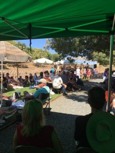Participants of Viano Winery's first ever 'Music on the Vineyard' event in Martinez picnic while listening to live music. (BRUCE CAMPBELL / Courtesy)