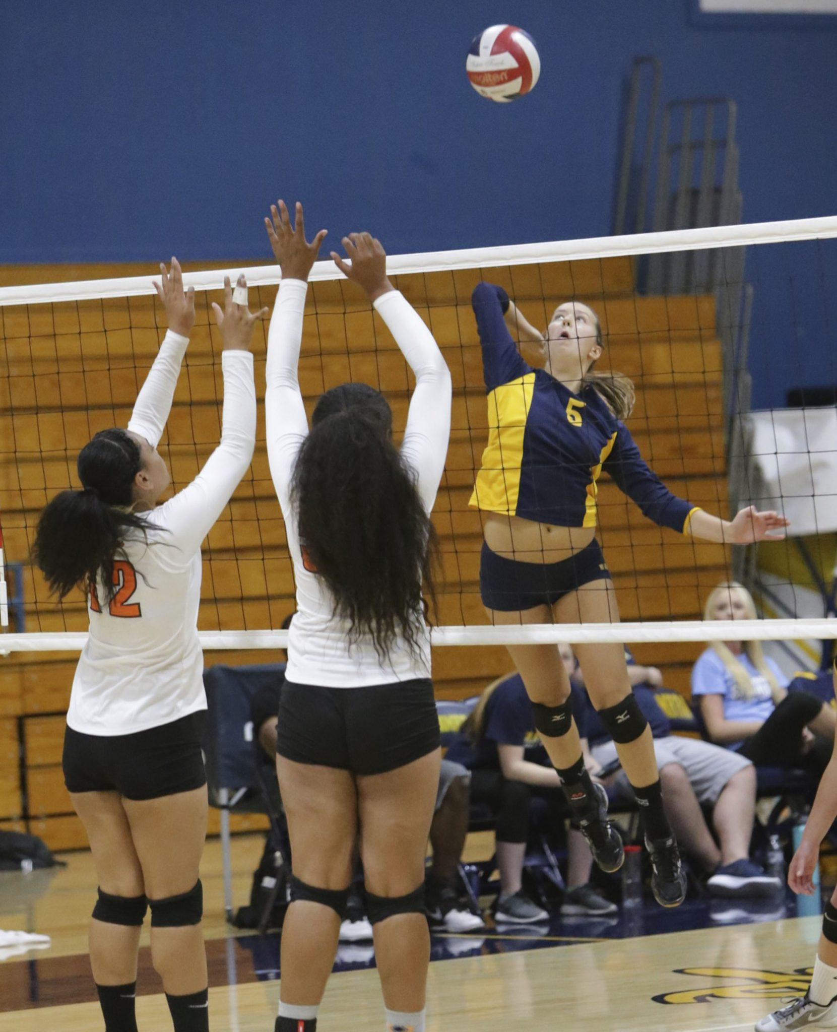 Alhambra senior Leslie Roofener leaps for one of her seven kills on the night in the Bulldogs' 3-1 win over the Pittsburg Pirates in their season opener. (MARK FIERNER / Martinez Tribune)
