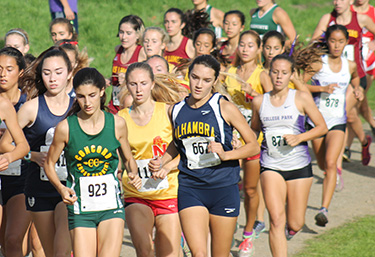 Alhambra junior Marissa D'Atri (center) leads a pack of runners at Hidden Valley Park in Martinez in the DAL championships on Nov. 5, 2016. (DARREN CHAVEZ / Courtesy)