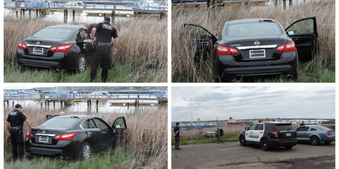 car-in-marsh-rgb