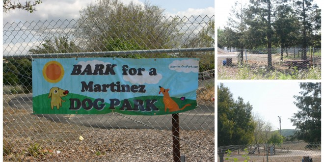 The future location of a dog park in Martinez, near the John Muir Amphitheater at Waterfront Park. (JOHN GRUBKA / Martinez Tribune)
